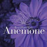 Wax Anemone [Logo Mark Design]