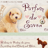 Parfum du Savon [Blog Design]